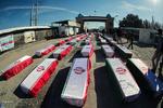 ۱۰۰۰ کردستانی در بمباران های رژیم بعث عراق شهید شدند