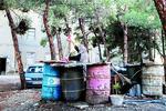افشای راز ۱۲ خانوار بی نام و نشان در دل جنگل چیتگر