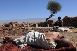 «ممیرو» در فرهنگسرای ارسباران اکران و نقد میشود