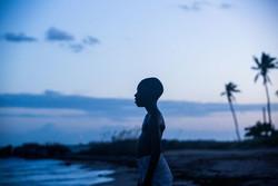 معرفی بهترین فیلمنامههای سال ۲۰۱۶/ «مهتاب» اول شد
