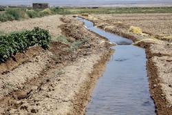 ۹۰ درصد منابع آب در بخش کشاورزی مصرف می شود