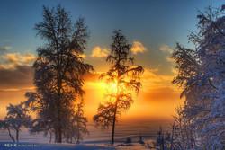 زیبایی های فصل زمستان