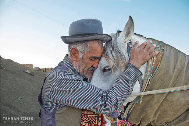 Avaz is embracing Ashkan, his 19-year-old mare. He cares too much about his horses and he says he would never let them feel hungry because he considers them as his family members.