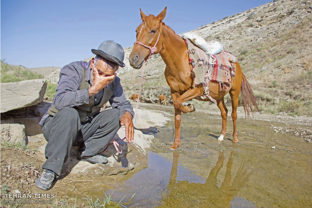 Avaz have his horses drink from the springs and feed in the plains.