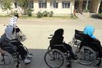 توانمندی معلولان با ایجاد مبلمان شهری مناسب امکانپذیر است