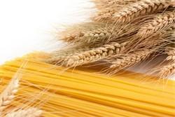ماکارونی رژیمی با فیبرهای خوراکی محلول و نامحلول تولید شد