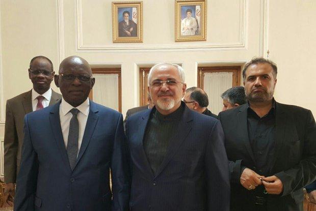دیدار رئیس مجلس جمهوری مالی با ظریف