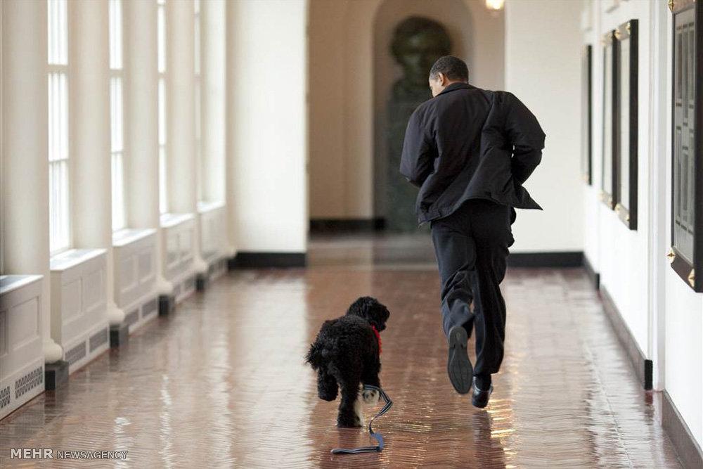 ریاست جمهوری باراک اوباما