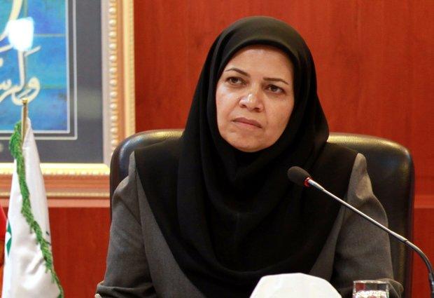 سهم نیم درصدی اقتصاد سبز از اقتصاد ایران