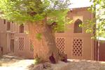 بهار در گوشه دنج روستاهای یزد/ سفری از تاریخ تا طبیعت