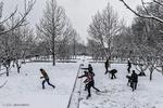کاهش دمای هوای کشور از یکشنبه آینده/بیشینه دما به زیر صفر میرسد