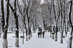 کاهش نسبی هوا در گیلان/ برف و یخبندان در راه است