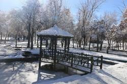 پارک جنگلی سرچشمه در زمستان رونق گرفت/ چشمه پارک جوشان شد