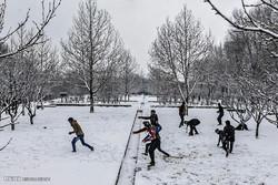 بارش برف در کابل