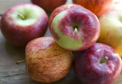 Philippines may import apples from Iran
