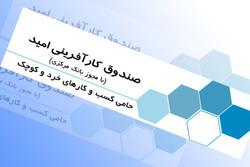 اختصاص ۵۰ میلیارد ریال برای اجرای ۵ طرح توسط صندوق کارآفرینی