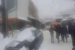 فیلم/موج سرمای بی سابقه در تونس