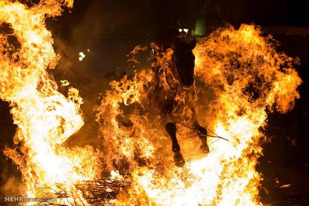عبور اسب ها از میان آتش برای آمرزش