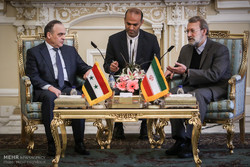 Syria's integrity, top priority of Astana talks: Larijani