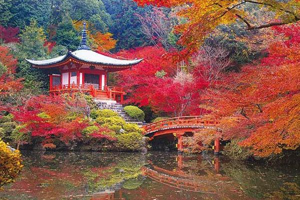 علاقه ژاپنی ها به جاذبه های کویری/هدایت سرمایه به سمت گردشگری