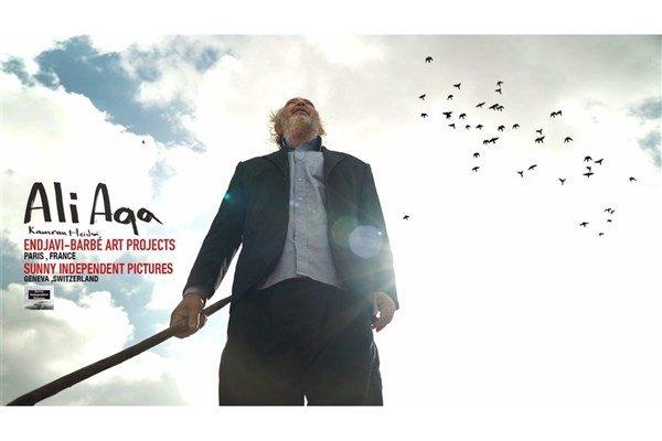 مستند «علی آقا» در شیراز ساخته شد/پایان یک کبوترباز در قاب پرتره