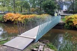 فیلم/ پلی از مواد طبیعی در هلند