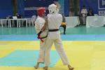 مسابقات کاراته ارتش با قهرمانی نیروی زمینی پایان یافت