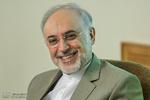 صالحی از حماسه آفرینی مردم ایران در انتخابات ۹۶ تقدیر کرد