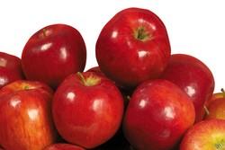 فایده سیب در تقویت ایمنی بدن و کاهش فشارخون
