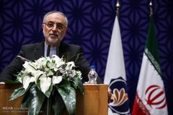 Salihi ve Amano Tahran'da nükleer anlaşamayı ele aldı