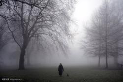 تداوم هوای سرد در زنجان
