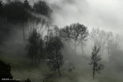 هفته نسبتاً سرد در انتظار مردم گلستان