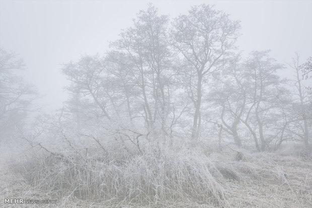 بارش برف در برخی مناطق اردبیل/ دمای سرعین به منفی ۳ درجه رسید