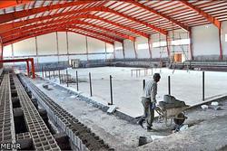 شهرستانهای استانهمدان در جاده خاکی ورزش/زیرساختها ضعیف است