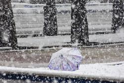 بارش برف در شهرستان بروجرد
