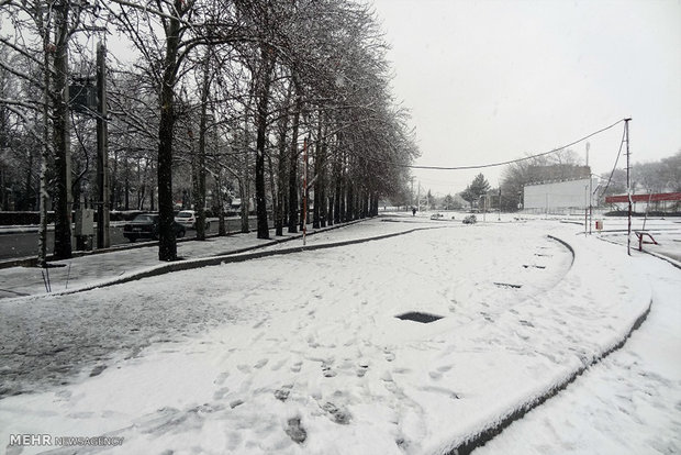Snow in Boroujerd