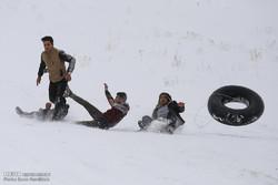 برف بازی در مناطق سردسیر قم ۴ مصدوم برجای گذاشت