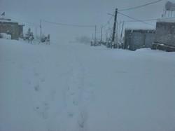 برف///