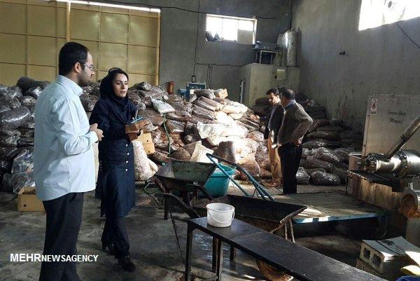 کارگاههای غیر بهداشتی در دشتستان تعطیل میشوند