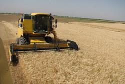 جهاد کشاورزی قزوین