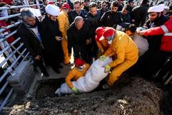 نامگذاری یکی از معابر منطقه ۷ به نام شهید آتش نشان حادثه پلاسکو