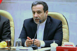 Araghchi calls for closer trade ties with IORA states