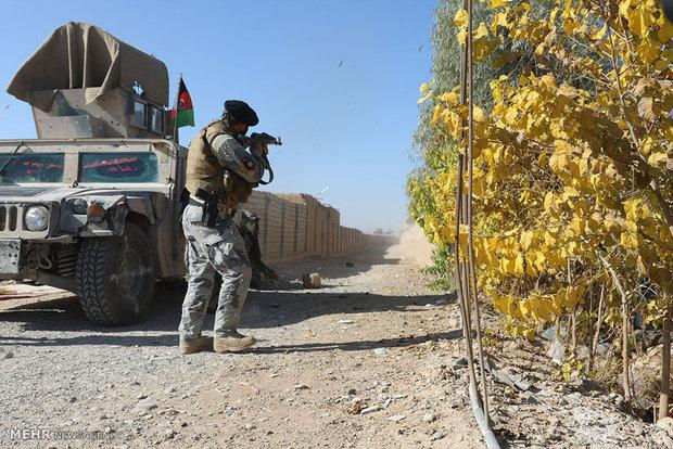 افغان ها در خط مقدم نبرد با طالبان