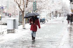 الثلوج تغطي شوارع العاصمة طهران