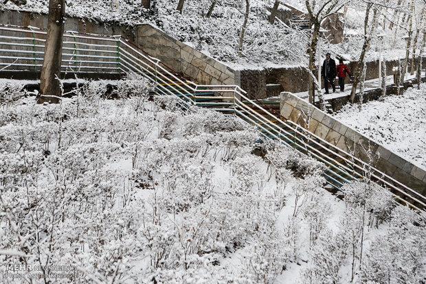 تساقط الثلوج في طهران