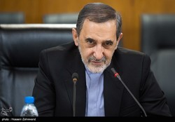 Iran will carry on its missile activities: Velayati