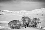 طبیعیت برفی استان کردستان