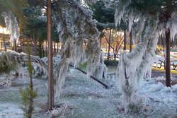 یخبندان در خرم آباد