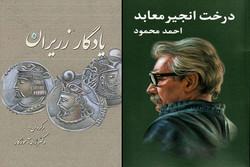 «درخت انجیر معابد» به چاپ دهم رسید/ «یادگار زرایران» چاپ دومی شد