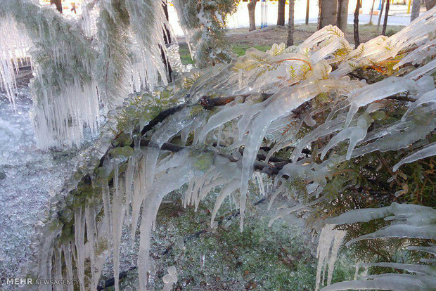 Icicles in Khorramabad
